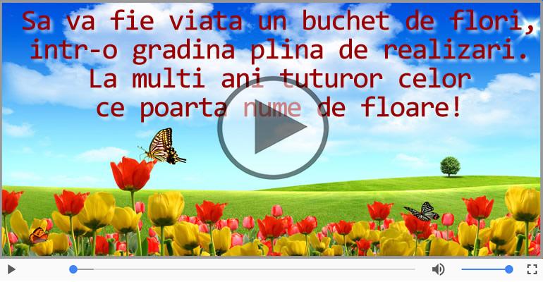 Felicitari muzicale de Florii - Felicitare muzicala si animata de Florii