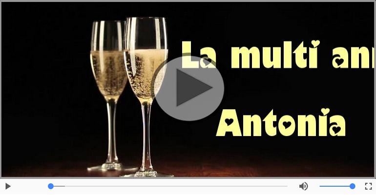 Felicitari muzicale de la multi ani - La multi ani cu sanatate, Antonia!