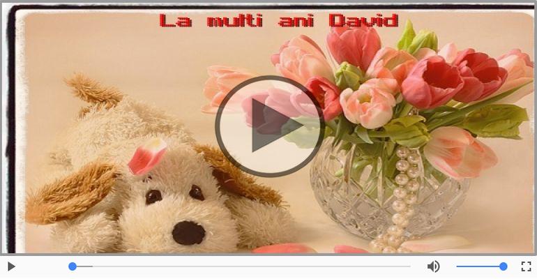 Felicitari muzicale de la multi ani - David, La Multi Ani!