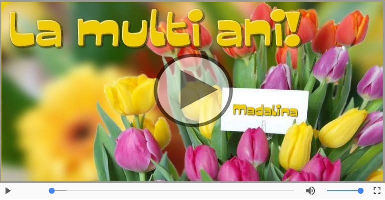 Felicitari muzicale de la multi ani - Madalina, La Multi Ani!