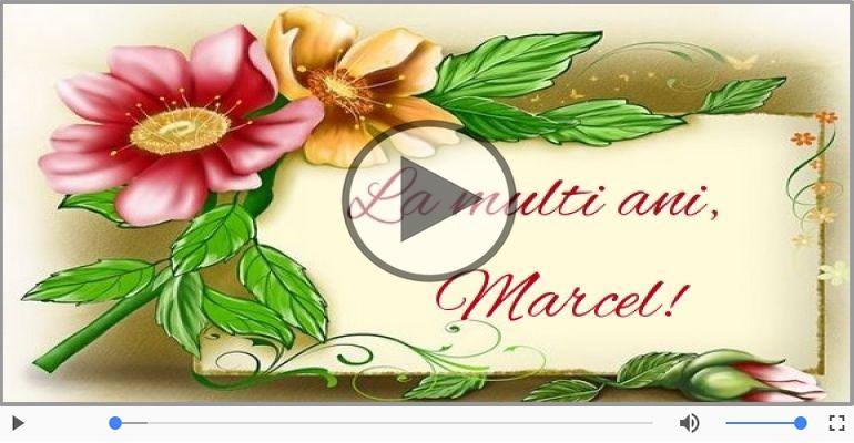 Felicitari muzicale de la multi ani - La multi ani, Marcel!