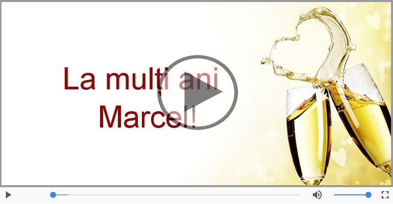 Felicitari muzicale de la multi ani - A mai trecut un an, La multi ani Marcel!