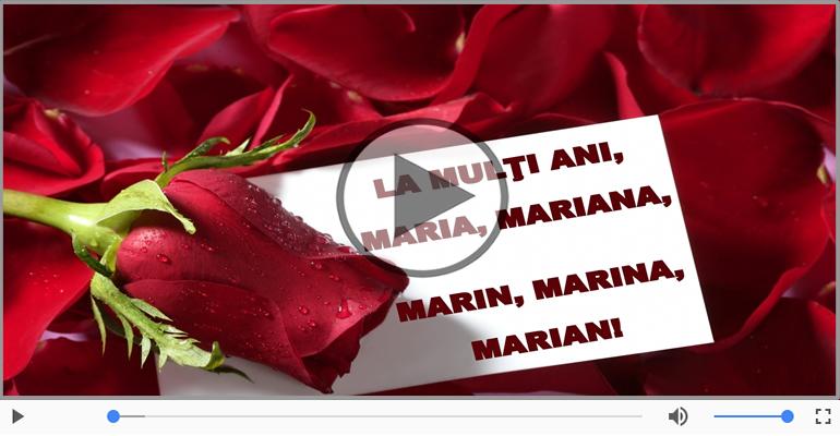 Felicitari muzicale de Sfanta Maria - La multi ani de Sfanta Maria!