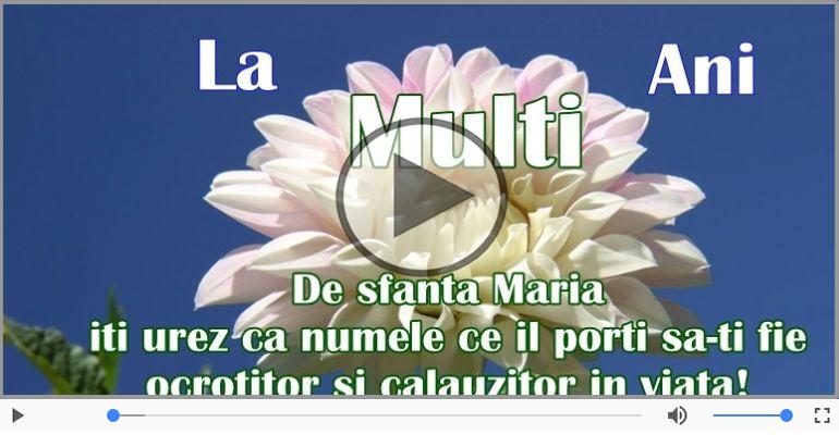 Felicitari muzicale de Sfanta Maria - De Sfanta Maria, La multi ani sarbatoritilor!