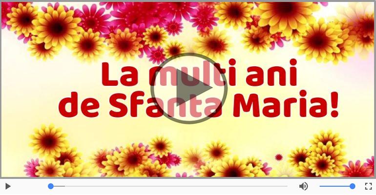 Felicitari muzicale de Sfânta Maria Mica - Felicitare muzicala de Sfanta Maria!