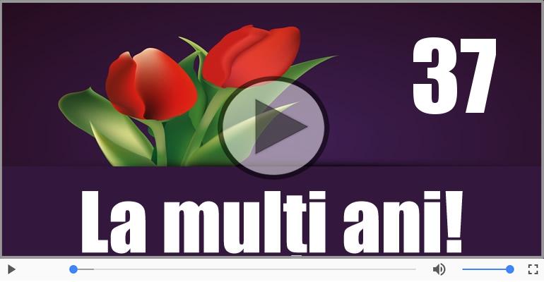 Felicitari muzicale Pentru 37 ani - La multi ani 37 ani! Melodia: La multi ani versiunea originala!