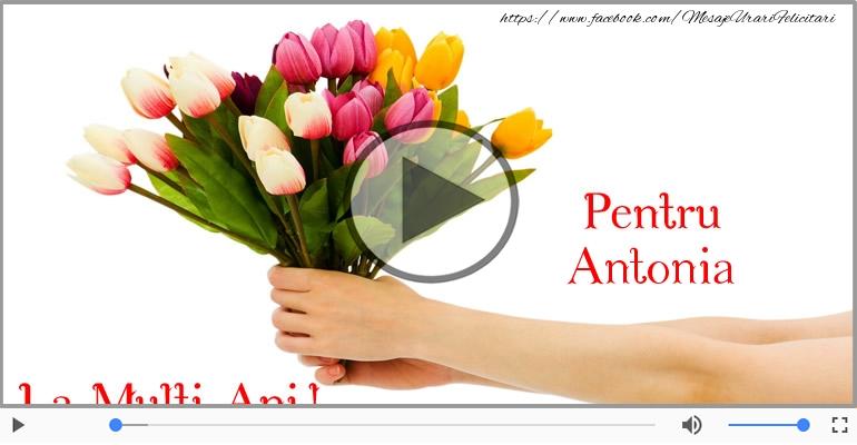 Felicitari muzicale de zi de nastere - La multi ani, Antonia!